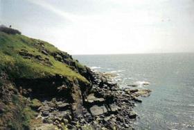 Lizard Cornwall