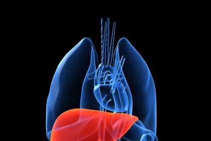 Organ transplants at record level